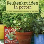 Keukenkruiden in potten
